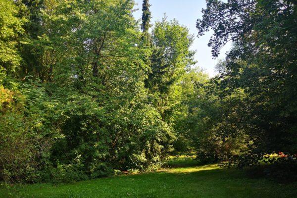 Porzellanreisen Selb Schloss Erkersreuth Park